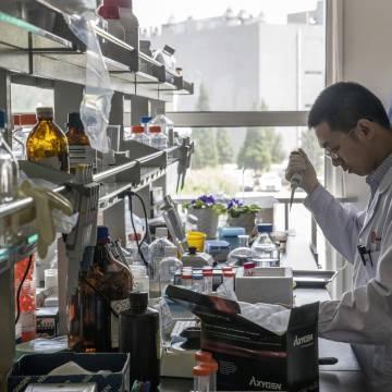 Trung Quốc tạo được những em bé chỉnh sửa gien đầu tiên thế giới?
