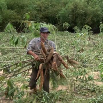 Bây giờ Trung Quốc cũng 'soi kĩ' nông sản Việt