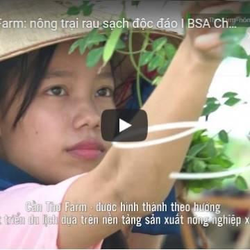 [Video] Cần Thơ Farm – nông trại rau sạch độc đáo