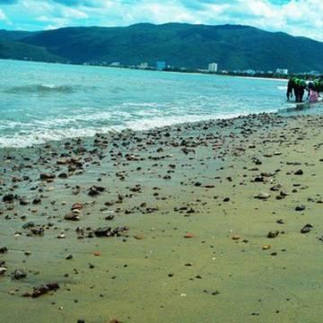 Doanh nghiệp 'đua nhau' xin nhấn chìm hàng triệu m3 bùn cát xuống biển