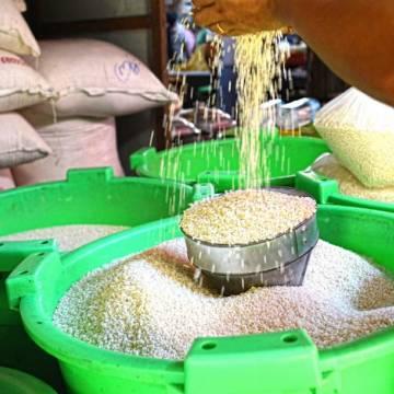 Xuất khẩu gạo rộng cửa quý đầu năm 2019