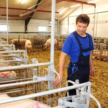 Phập phồng ngành chăn nuôi hơn 10 tỷ USD