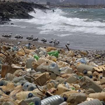 Coca-Cola và Pepsi đồng lòng trong nỗ lực giảm thiểu rác thải nhựa