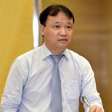 'Có tình trạng hàng hóa đội lốt xuất xứ Việt Nam để bán ngay tại Việt Nam'