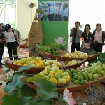 Xuất khẩu hàng rau quả tiếp tục khởi sắc