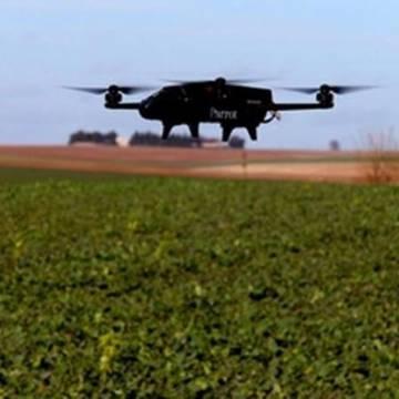 Luxembourg ứng dụng thiết bị bay không người lái trong việc trồng nho