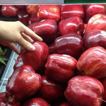 Hàng rau quả, thủy sản Mỹ vào Việt Nam tăng mạnh