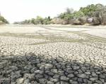 COP25: Khai mạc trong lo âu