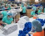 Chỉ xuất khẩu trang y tế với mục đích viện trợ, hỗ trợ quốc tế