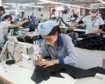 Bộ Công Thương triển khai thủ tục trình phê chuẩn Hiệp định EVFTA