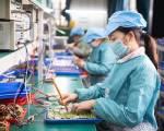 Covid-19 'thổi bay' việc làm của 1/6 lao động trẻ toàn cầu