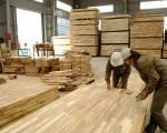 Kiểm tra việc áp dụng mã HS đối với mặt hàng gỗ cao su xuất khẩu