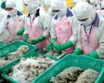 Tôm Việt có cơ hội gia tăng thị phần giữa đại dịch
