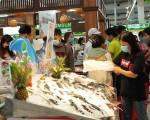 Đồng Tháp đưa cá tra 'bơi' ra thị trường Hà Nội