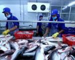 Indonesia đặt mục tiêu xuất khẩu thủy sản đạt 6,05 tỷ USD năm 2021
