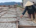 Không xuất được sang Trung Quốc, 80% sản lượng cá cơm chuyển làm mắm
