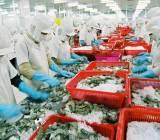674 DN thủy sản Việt Nam được cấp phép xuất khẩu vào Đài Loan