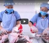 [Video] Rút xương cá thác lác để nâng cao giá trị sản phẩm