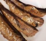 Sử thi về món cá trích bền vững