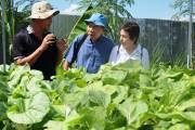 Cantho Farm, nơi trải nghiệm lý thú cho cộng đồng