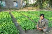 'Vương trùn quế' và ước mơ làm nông bền vững