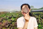'Cô gái bột rau' và bản lĩnh một doanh nhân trẻ