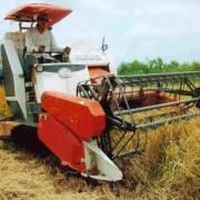 Bộ Nông nghiệp sẽ bãi bỏ, sửa đổi 118 điều kiện đầu tư kinh doanh