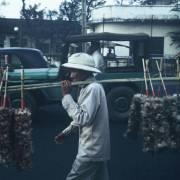 Trần Tiến Dũng: Những ngày cuối năm  của người bán chổi lông gà