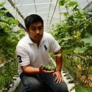 Chàng du học sinh Mỹ và trang trại 'rau tí hon'