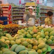 Năm 2015, xuất khẩu rau quả đạt kỷ lục 2,2 tỷ USD