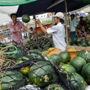Xuất khẩu rau quả: 60% bán cho Trung Quốc