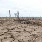Khoảng 60 triệu chịu ảnh hưởng của El Nino
