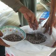 Trên 20% mẫu phân bón hữu cơ không đạt chất lượng