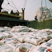 Xuất khẩu gạo tháng 11 vẫn bế tắc