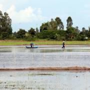 Nước mặn đã xâm nhập 13/13 tỉnh, thành ĐBSCL