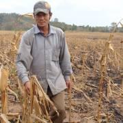 Nắng nóng tiếp tục hoành hành tại Đông Nam Bộ và Tây Nguyên