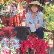 Ngày 8/3: Hoa hồng tăng giá gấp đôi năm ngoái