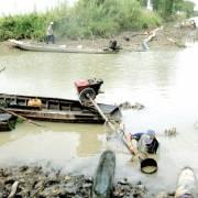 ĐBSCL: Tính riêng trên lúa, hạn – mặn đã gây thiệt hại 5.000 tỷ đồng