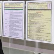 Số cử nhân thất nghiệp đã giảm