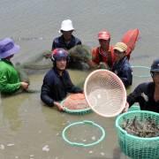 Nông thủy sản không đủ bán