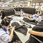 Tại sao doanh nghiệp Việt lại ngày càng teo tóp?