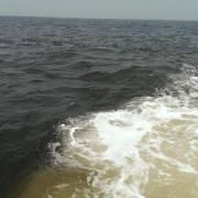 Hà Tĩnh lại xuất hiện dải nước biển màu đen sẫm khác thường