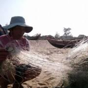 Cơ bản hoàn thành việc bồi thường sự cố môi trường miền Trung