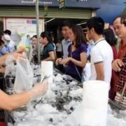 Thừa Thiên – Huế: Hai ngày, thu mua hơn 200 tấn cá biển