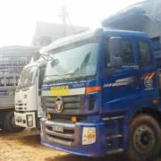 Heo thịt Việt Nam chưa được cấp phép nhập khẩu vào Trung Quốc