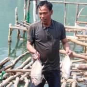 TT-Huế: Phân bổ 9,4 tỷ đồng và 630 tấn gạo hỗ trợ ngư dân