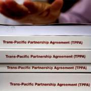 Hai từ khóa cho doanh nghiệp thời TPP: Hiểu luật và hợp tác