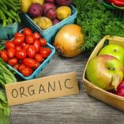 Nông nghiệp hữu cơ là xu thế tất yếu
