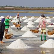 110.000 tấn muối Cần Giờ chờ 'giải cứu'