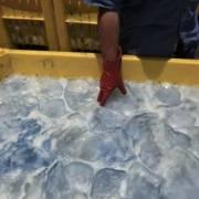 Trung Quốc thu giữ 10 tấn sứa giả
